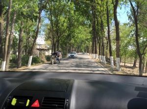 Dead-Ayi Road 2
