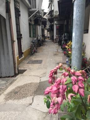 Street in Peng Chau