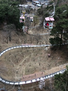 The Chairlift (Ropeway) and Toboggan Track
