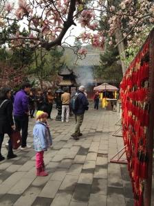 Tanzhe Temple